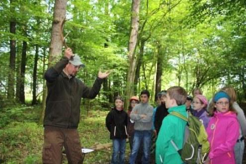 Ranger M. Rogel erklärt den Hirschlauf