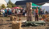 Kettensägenkunst beim Naturmarkt in Wartha (Foto: Ralf M. Schreyer)